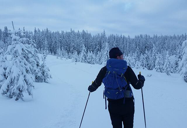 Skigåer vinter
