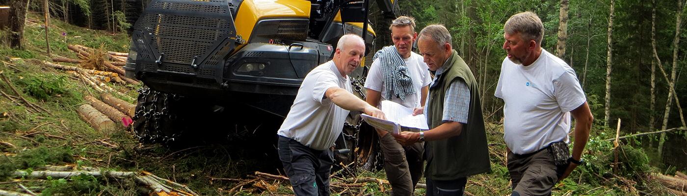 Skogtjenester i Hurdal